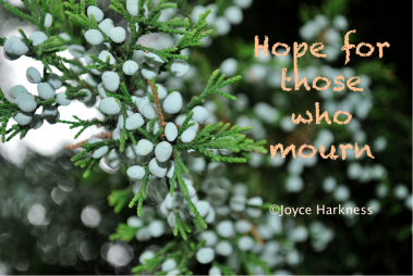 Hope for those who mourn